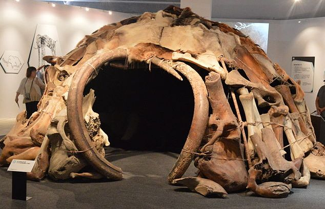 mammoth tusk hut.  In 1965, four mammoth bone huts were found in Mezhirich (central Ukraine) by a farmer who was digging a cellar. These dwellings dated back 15,000 years ago and had a total of 149 bones in the construction.