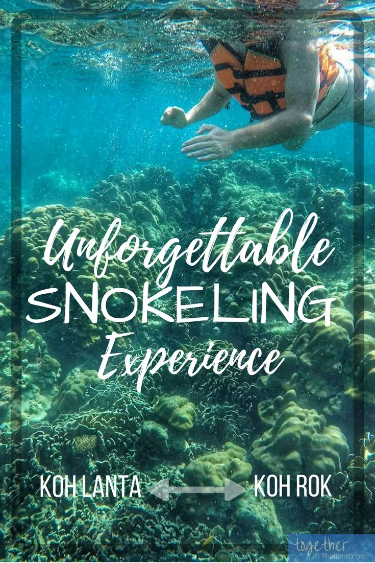 Some amazing snorkeling can be done off the coast of Koh Lanta and it's amazing beaches. If you're staying at one of the hotels there and looking for things to do, get on a speedboat tour and go from Koh Lanta to Koh Rok for some snorkeling and beach fun. http://togetherinthailand.com/koh-lanta-snorkeling-tour-koh-rok/