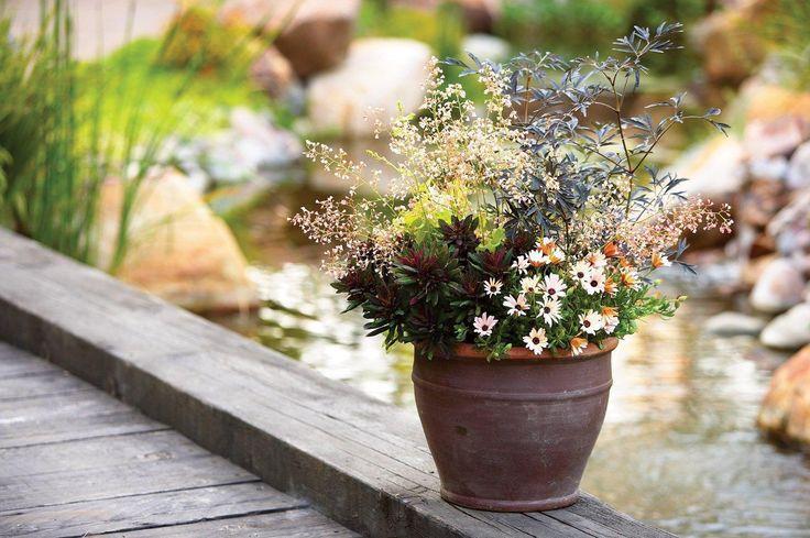 17 best Garden & Landscape Design images on Pinterest | Garden ...