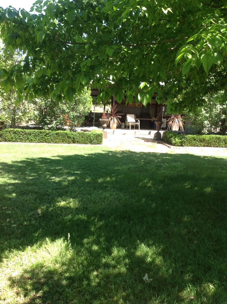 The side yard