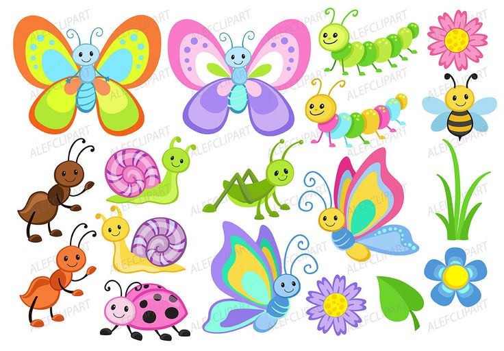 Imágenes Prediseñadas Linda Bugs  colorante de imágenes