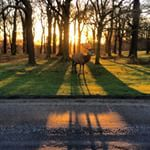 Cycling in London – Top London Cycling Routes | Strava