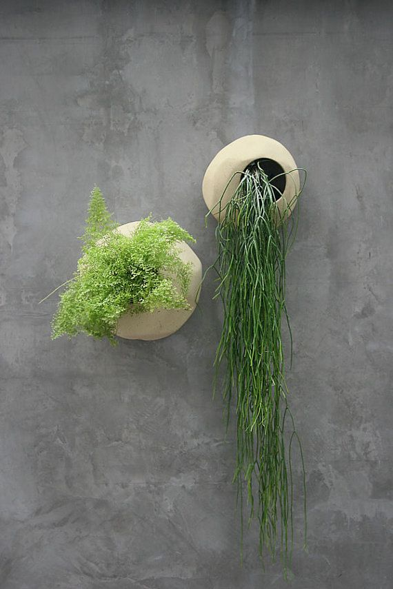 Wall Planters ~ Sand Color by JagDin on Etsy