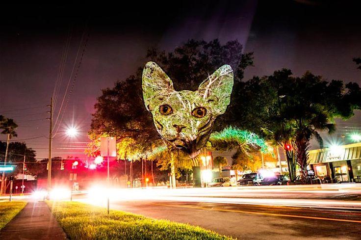 Julien Nonnon projiziert menschliche Tiere an die Häuserwände von Orlando | KlonBlog