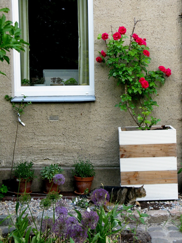 17 best images about unique garden ideas on pinterest tall planters planters and painting plastic - Unusual planters for outdoors ...