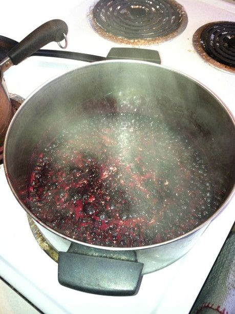 A quick and easy jam recipe I copied from my friends cookbook.  I think it was published by the Idaho Fish and Game department.