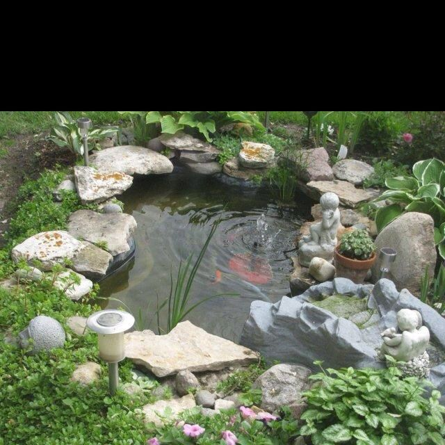 Backyard fish pond kits small bfish bpond bwood blayered for Outdoor fish pond supplies