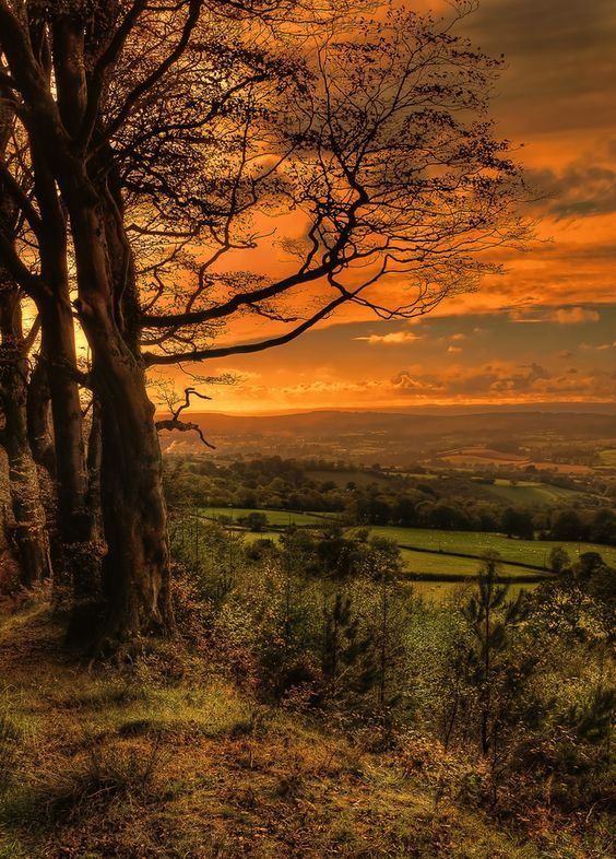 Devon, England. Warm Autumn sunsets are some off Devon's best. We think its time for an early evening walk. See our special offers and book your stay with us this Autumn. https://www.coastandcountry.co.uk/special-offers/special-offers-two/