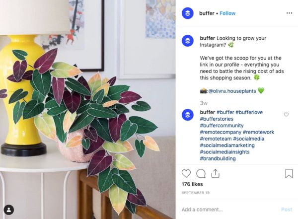 Instagram Marketing for Small Businesses: 4 Tactics that Actually Convert   Instagram