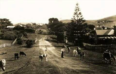 Manning St,Kiama in 1909.