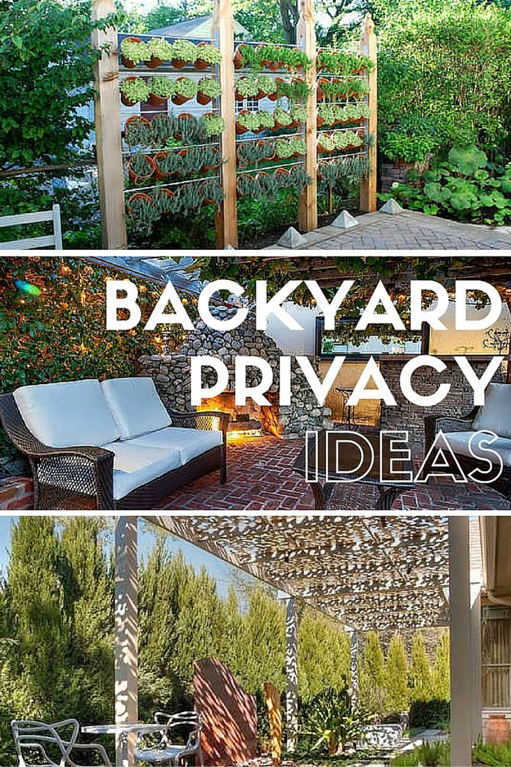 Get privacy in your backyard with some of these design ideas. From living fences to trellises, these plans will your yard a comfortable retreat.