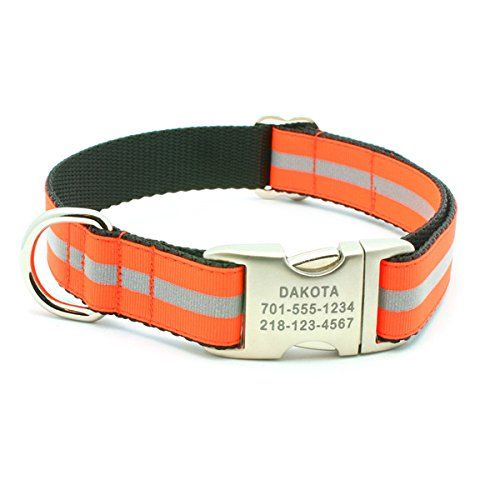 Personalized reflective dog collars really are important for your dog's safety and your peace of mind. Even if your dog stays inside or in a fenced in yard all of the time, there is always that one time when for whatever reason they get loose.