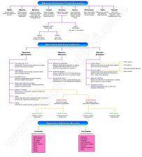 Öğrenmede Temel Kavramlar-Etkileyen Faktörler