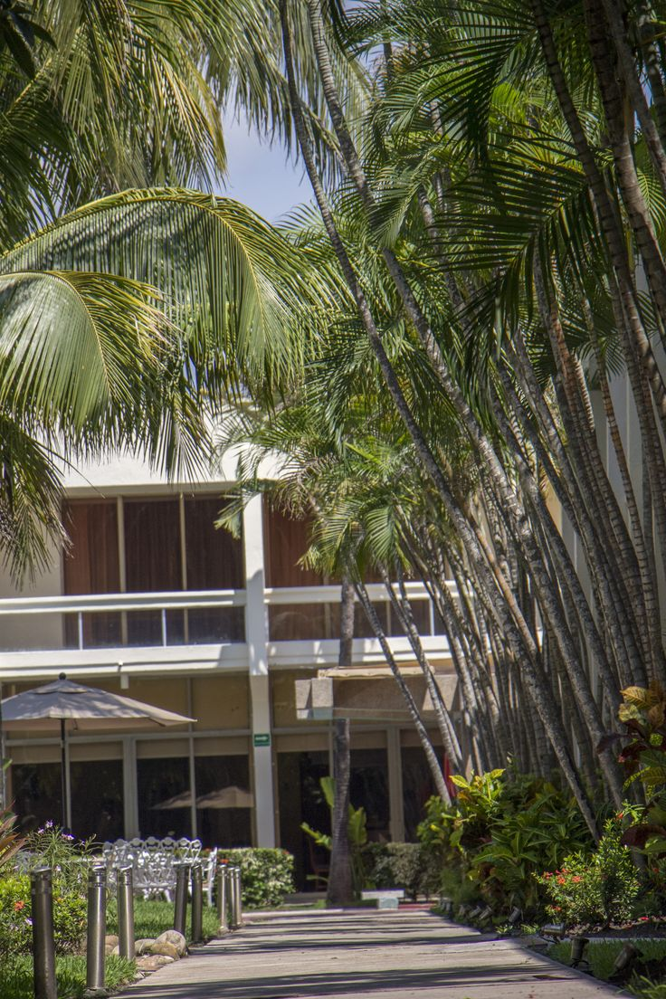 Jardín del Hotel Posada de Tampico.