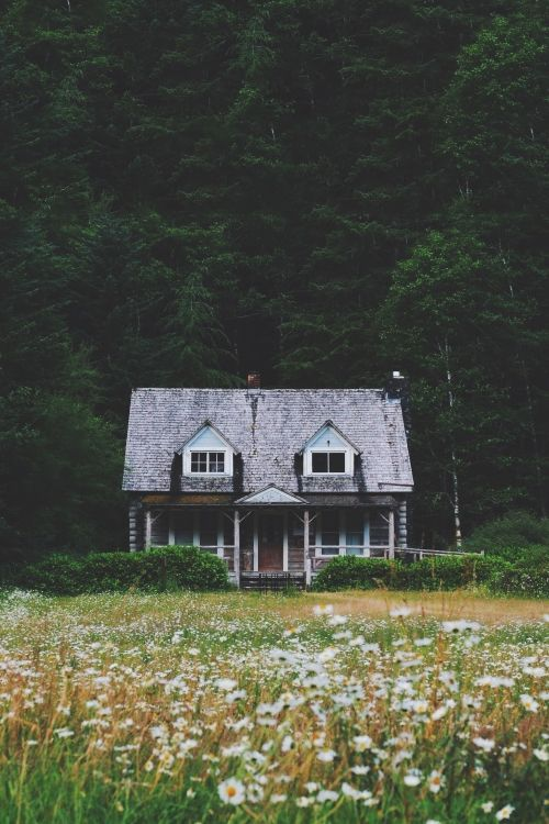Meadow cabin.