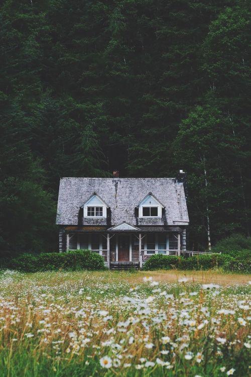 Meadow cabin.