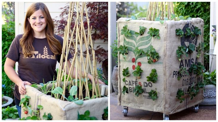 DIY Vertical vegetable Grow Box Saves You a Ton of Space