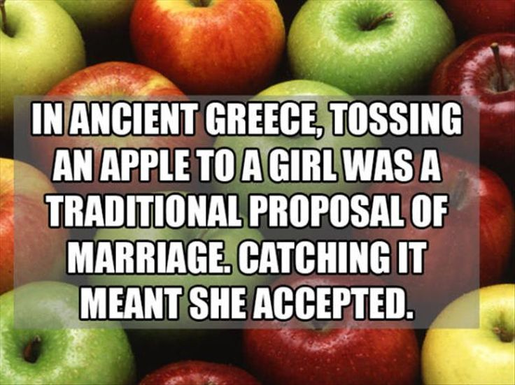 What if the girl just didn't want to get hit by an apple, that's why she caught it