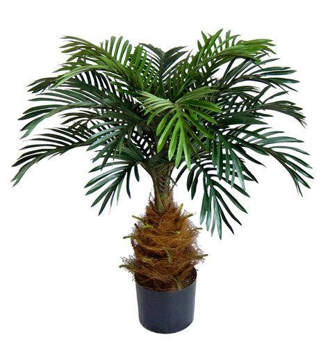 Cycaspalme 80cm DA Kunstpalmen Kunstpflanzen künstliche Palmen Cycas