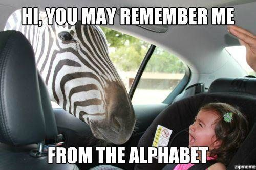 Z is for ZebraLittle Girls, Funny Pictures, Funny Stuff, Alphabet, Kids, The Zoos, So Funny, Animal, Zebras