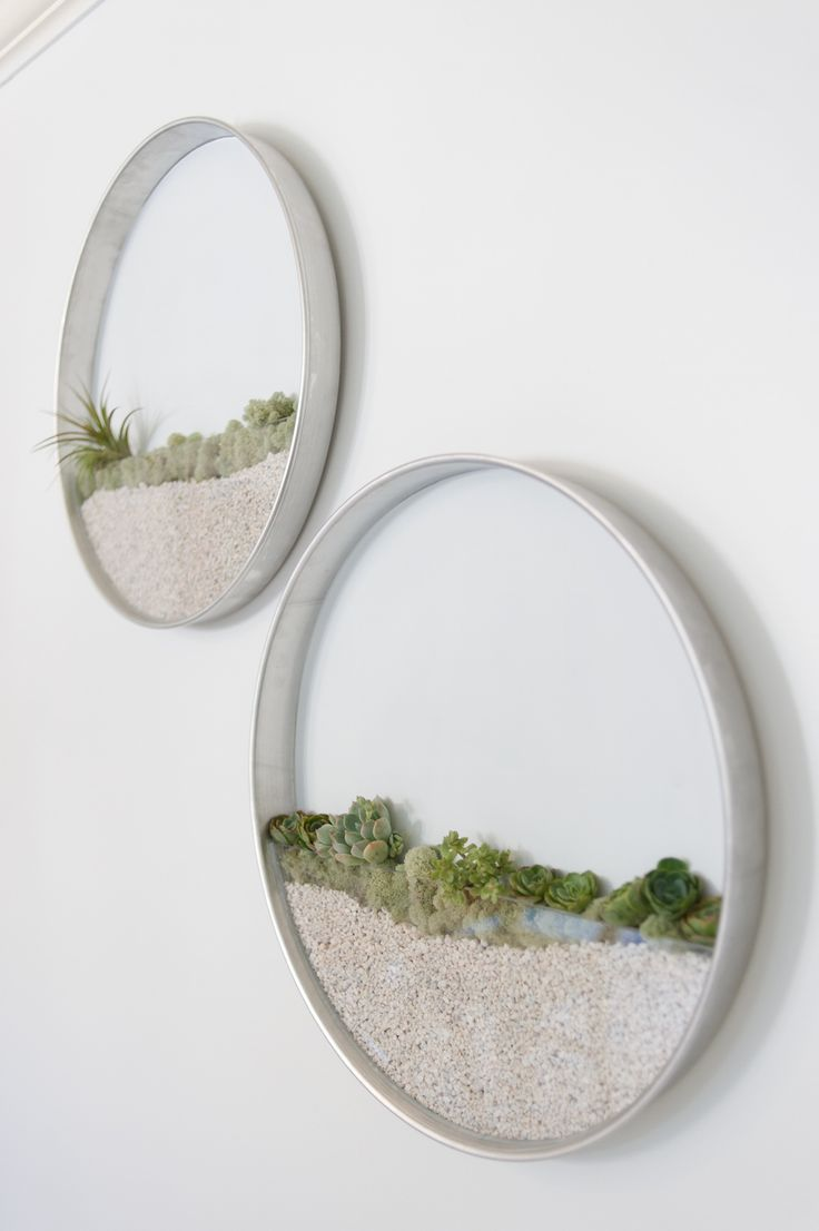 wall planters        A floral designer and gardner, Kim Fisher has moved the pleasures of garden creation indoors, producing vertical planters that decorate the wall rather than tabletop or window sill. These round, transparent planters surround the greenery inside wi