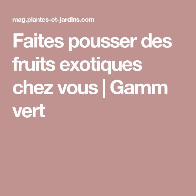 Faites pousser des fruits exotiques chez vous   Gamm vert