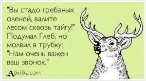 """Аткрытка №368724: """"Вы стадо гребаных  оленей, валите  лесом сквозь тайгу!"""" Подумал Глеб, но молвил в трубку: """"Нам очень важен  ваш звонок."""" - atkritka.com"""