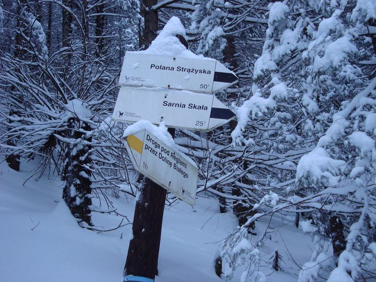 https://flic.kr/p/QtmpsW | Dolina Strążyska Tatry | www.facebook.com/angrywaldeuszek/?ref=settings