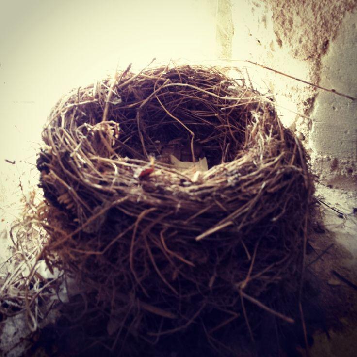 Syndrome du nid vide Il y a dans la vie d'une maman un moment délicat, c'est…