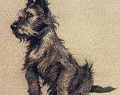 Items op Etsy die op Een dozijn honden of zo Cecil obkar zeldzame Vintage reproductie Print #10 13, maten A5, A4, 5R hoge kwaliteit glanzend papier (Frame, muur opknoping) lijken