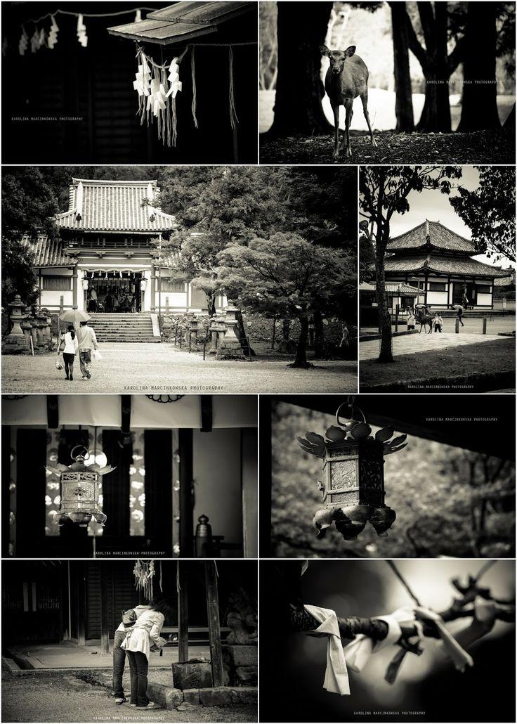 Tamukeyama Hachiman-gū Shrine, Nara, Japan, black and white photography