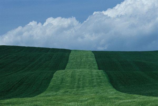 Franco Fontana Landscape,Basilicata 1985