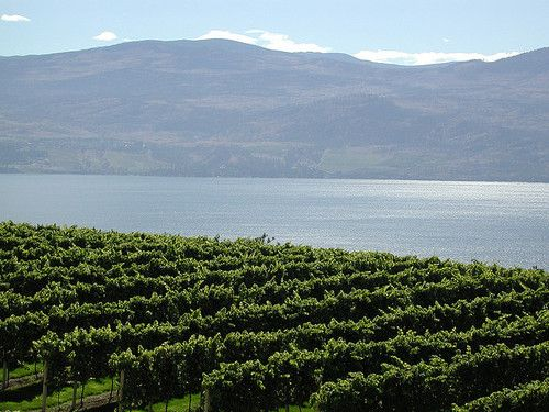 Top 10 Wine Destinations around the world Number 1. Okanagan Valley, British Columbia.