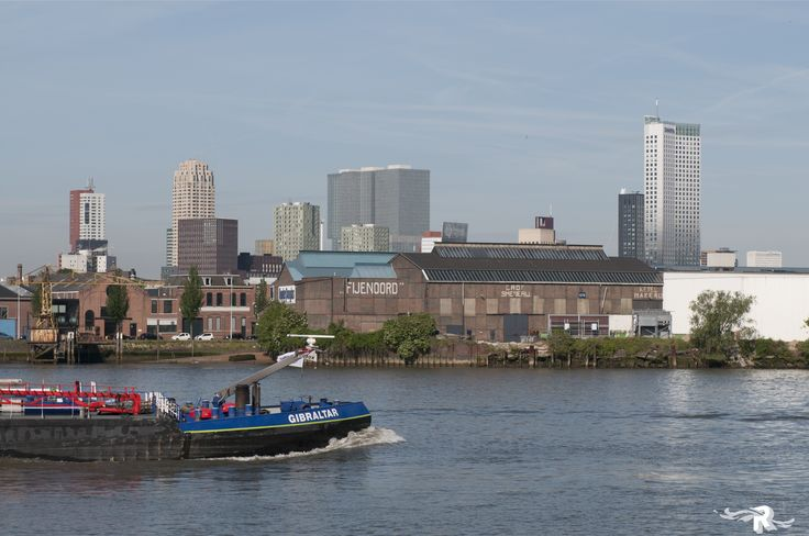 Rotterdam | The Netherlands