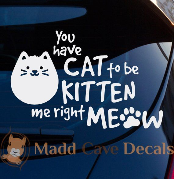 You Have Cat To Be Kitten Me Right Meow Decal | Right meow