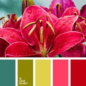 color aguamarina, color fucsia, color verde hierba, colores fucsia y verde hierba, elección del color, selección de colores vivos, tonos contrastantes, tonos rosados, verde lechuga y rosado.