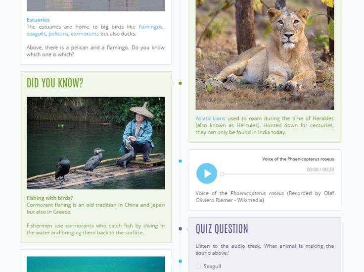 30 best CoreAssessment SBAC \ PARCC images on Pinterest - k amp uuml che in u form