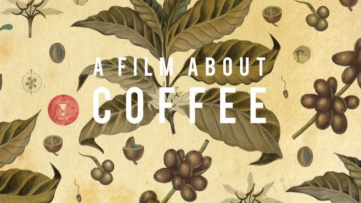 A Film About Coffee on Vimeo