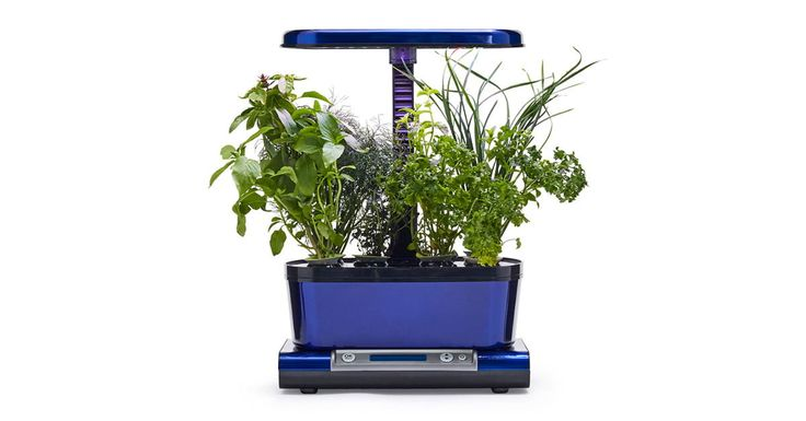 Grow Your Own Herbs At Home With A Smart Aerogarden 400 x 300