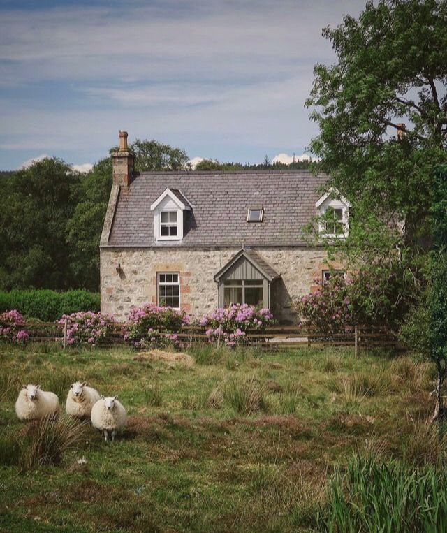 Preparing Dinner Here In Late Afternoon Opening In 2020 Scottish Cottages Cottage Countryside