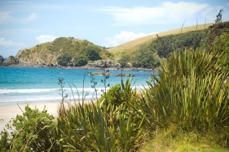 AUCKLAND TO MATAKANA PRIVATE LUXURY TOURS. Experience the rich local flavours of the Matakana coast on our Private Auckland to Matakana Coast Food and Wine Tours. TIME UNLIMITED TOURS.