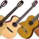 The Best Acoustic Guitars - From $100 to $2000   Gearank