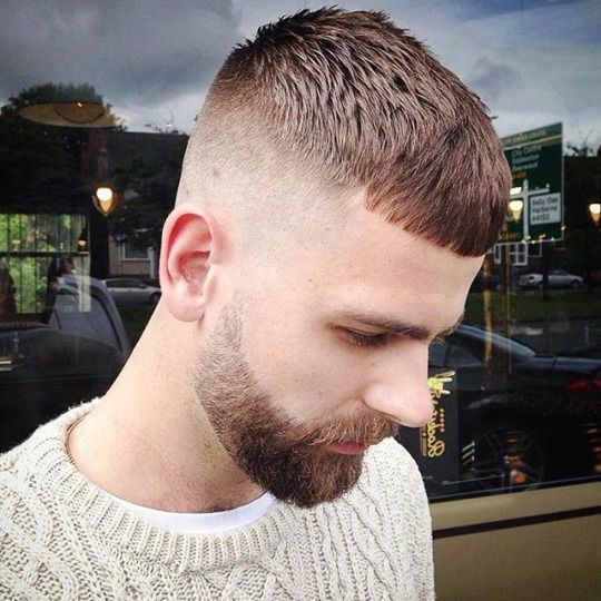 The 10 Best Hairstyles For Men That Will Never Go Out Of Style: 31 Best French Crop Haircut Images On Pinterest