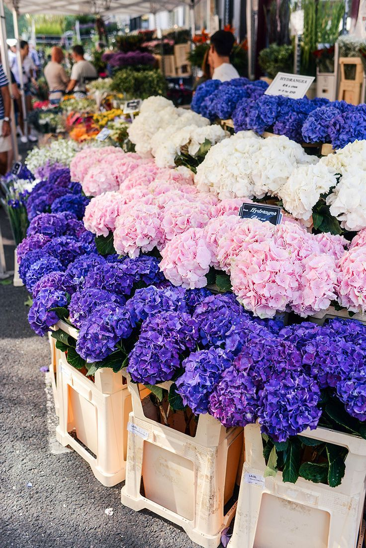 Columbia Road Flower Market The Style Scribe In 2020 Columbia Road Flower Market Flower Market Beautiful Flowers