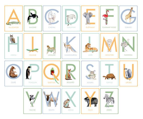 French Alphabet Children's Wall Cards Printable PDF