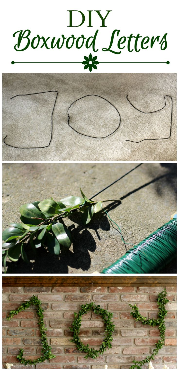 Make your own holidays letters with wire hangers and boxwood. It's really easy to do and free. ~ gardenmatter.com