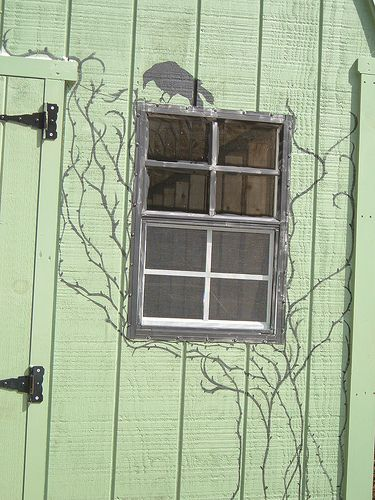Great idea for the garden shed by *dark(ly dreaming)gardener