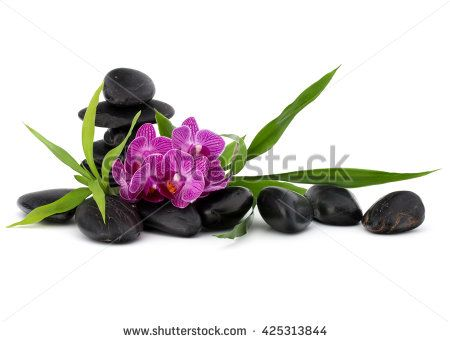 Zen pebbles and orchid flower. Stone spa and healthcare concept.