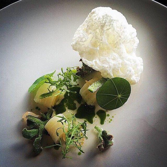 #markeather #cuttlefish @vuedemonderialto @snairn1 @cozzlo28 @jujames20 #iceplant