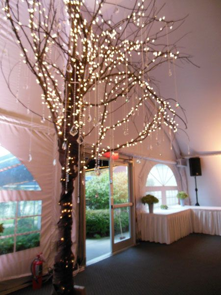 decorative trees for weddings 17 best images about wedding lighting inspiration on 3464